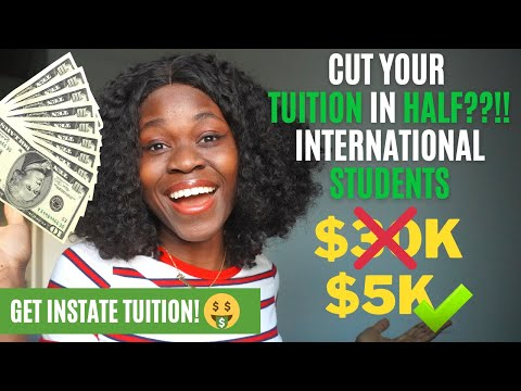International student tuition in usa cut in half! & get in-state scholarships 🤑 storytime ✨