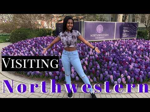 Visiting northwestern university | wildcat day 2019 (campus and impressions)