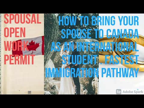 How to bring your spouse to canada as an international student. spousal open work permit.